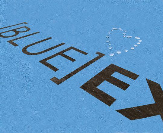 לוח גבס כחול blue Ex