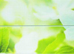 גבס ירוק